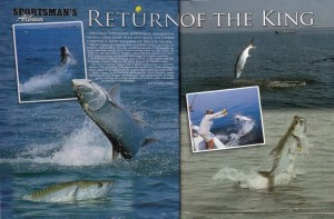 Return of the King-Photo Essay