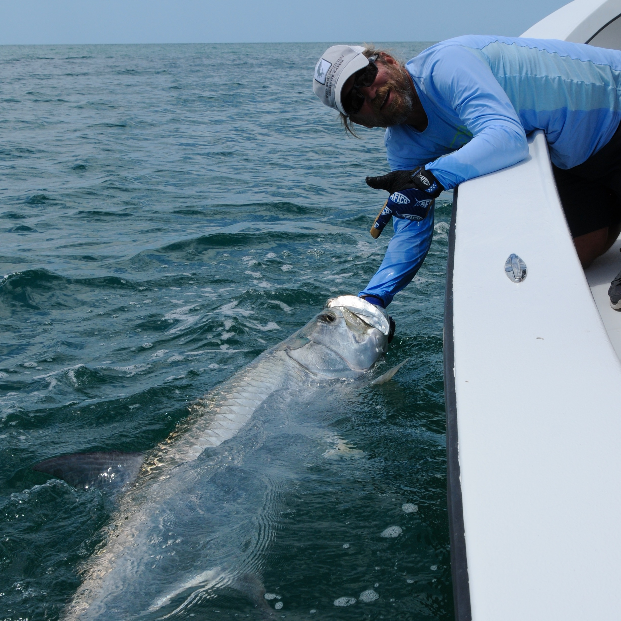 06 28 2015 palm island florida tarpon fishing report for Florida tarpon fishing